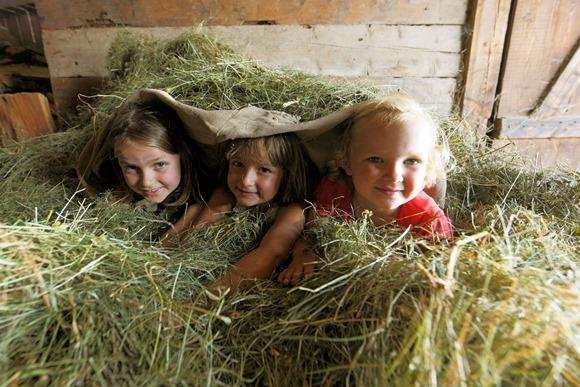 Kinderen ravotten op boerenerf