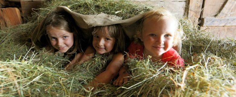 Top 5 leukste belevenissen voor kinderen op een Roter Hahn vakantieboerderij
